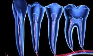 Nanotechnologie pomogą w walce z próchnicą