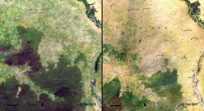 deforestation-of-baban-rafi-forest-niger-1976-vs-2007