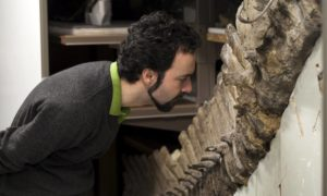 Scenariusz jak z Parku Jurajskiego: W prehistorycznych skamielinach odkryto komórki krwi