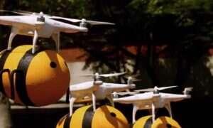 Te sympatyczne drony w kształcie pszczółek dostarczają na Tajwanie piwo