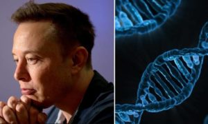 """Problem Hitlera"", czyli Elon Musk dystansuje się od badań nad ludzkim DNA"