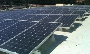 Technologia wprost z natury pomoże udoskonalić ogniwa słoneczne