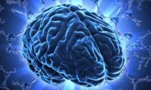 Nowa technika mapowania ludzkiego mózgu pomoże w badaniu autyzmu