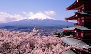 """WiFi na Górze Fudżi – alpinizm też staje się """"online"""""""