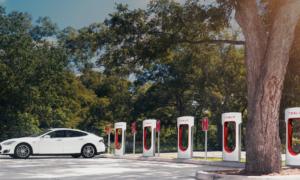 """Elon Musk upomina właścicieli Tesli """"S"""""""