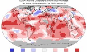 Lipiec najcieplejszym miesiącem w historii pomiarów