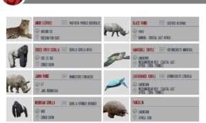 Infografika: Gdzie żyją najbardziej zagrożone gatunki zwierząt na świecie?