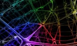Microsoft chce użyć programowalnych chipów do ulepszenia AI