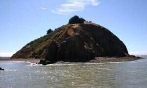 """""""Wyspa Skarbów"""" w Zatoce San Francisco na sprzedaż"""