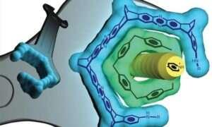 Klucz nakrętkowy w nanoskali