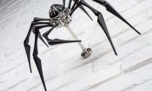 Zegar w kształcie pająka kosztuje kilkanaście tysięcy dolarów