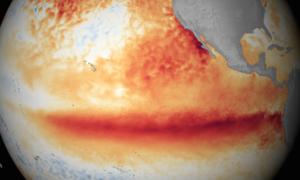 Tegoroczne El Niño może być najgorsze w historii pomiarów