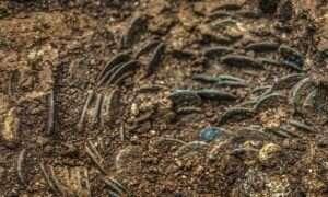 Szwajcarski rolnik odnalazł wór monet sprzed 1700 lat