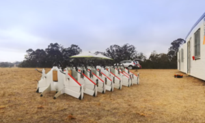 Dron kurierski Google wyfrunie w świat już w 2017 roku
