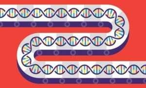 Naukowcy rozpoczynają produkcję DNA na skalę masową