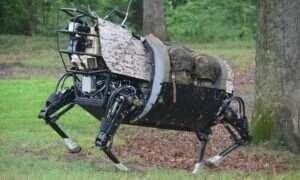 """Kroczący robot """"Big Dog"""" uznany przez Armię USA za zbyt głośny"""