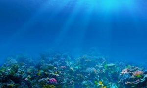 Woda morska jako antena?