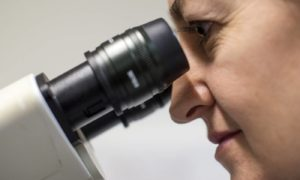 Nowa odmiana mikroskopii zmieniła oblicze nauki