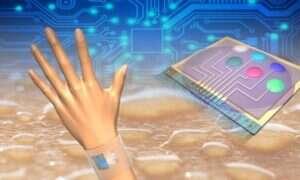 Elektronika ubieralna zbada nasz… pot