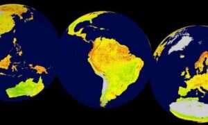 Mapa: Które miejsca na świecie są najbardziej podatne na zmianę klimatu?
