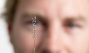 Stentroda – bezpieczna elektroda pomoże sparaliżowanym