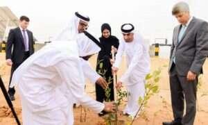 Farma produkująca jedzenie i paliwo na środku pustyni? Takie rzeczy tylko w Abu Dhabi