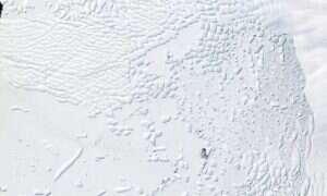 Topnienie lodów Antarktyki może przed rokiem 2100 doprowadzić do wzrostu poziomu mórz nawet o metr