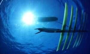 Dron będzie patrolował podwodne rezerwaty
