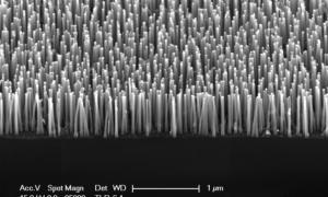 Przypadkowo odkryto sposób na stukrotne zwiększenie żywotności baterii
