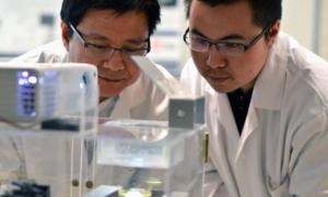 Nowy sposób drukowania 3D tkanek ludzkich
