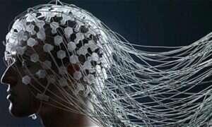 """Fale mózgowe jak odcisk palca? """"Stuprocentowa skuteczność"""""""