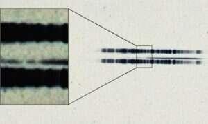 Klisza sprzed niemal stu lat zawierająca dowód na istnienie egzoplanety