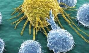 Współzałożyciel Napstera wyda 250 milionów dolarów na walkę z rakiem