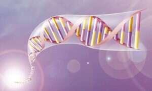 Microsoft chce przechowywać dane w DNA