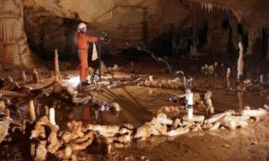 Wygląda na to, że neandertalczycy wcale nie byli tak prymitywni