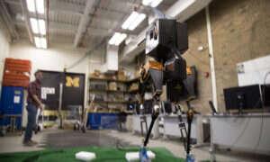 Marlo-robot poruszający się po trudnym, nieznanym terenie