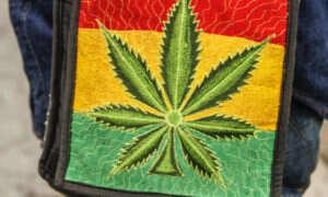 Negatywny wpływ marihuany na mózg