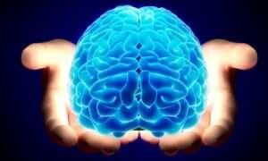 Zmartwychwstanie mózgu – oni naprawdę zamierzają to zrobić!
