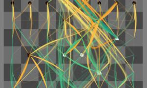 Thinking Machine – zobacz jak myśli program szachowy