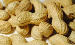 Orzeszki ziemne dla alergików