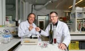 Mikro-winnica, zdolna do produkcji wina bez przerwy
