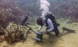 Podwodny mikroskop