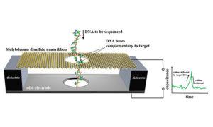 Nowa technika sekwencjonowania DNA