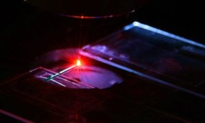 Laser zrobiony z krwi