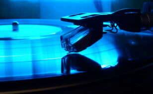 nadelaufplattemoehre1992