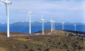 Duńskie turbiny wiatrowe biją nowy rekord