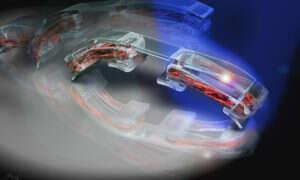 Bioinżynierowie dzielą się swoim robotem ze światem