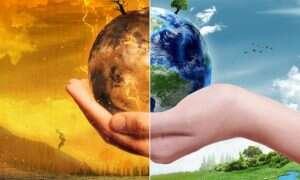 Osiem gatunków zwierząt dotkniętych przez globalne ocieplenie
