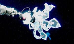 Na Harvardzie opracowano nowy typ robota morskiego