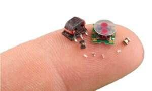 DARPA pracuje nad robotami wielkości owada…